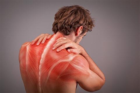 Shoulder pain treatment in Bangalore